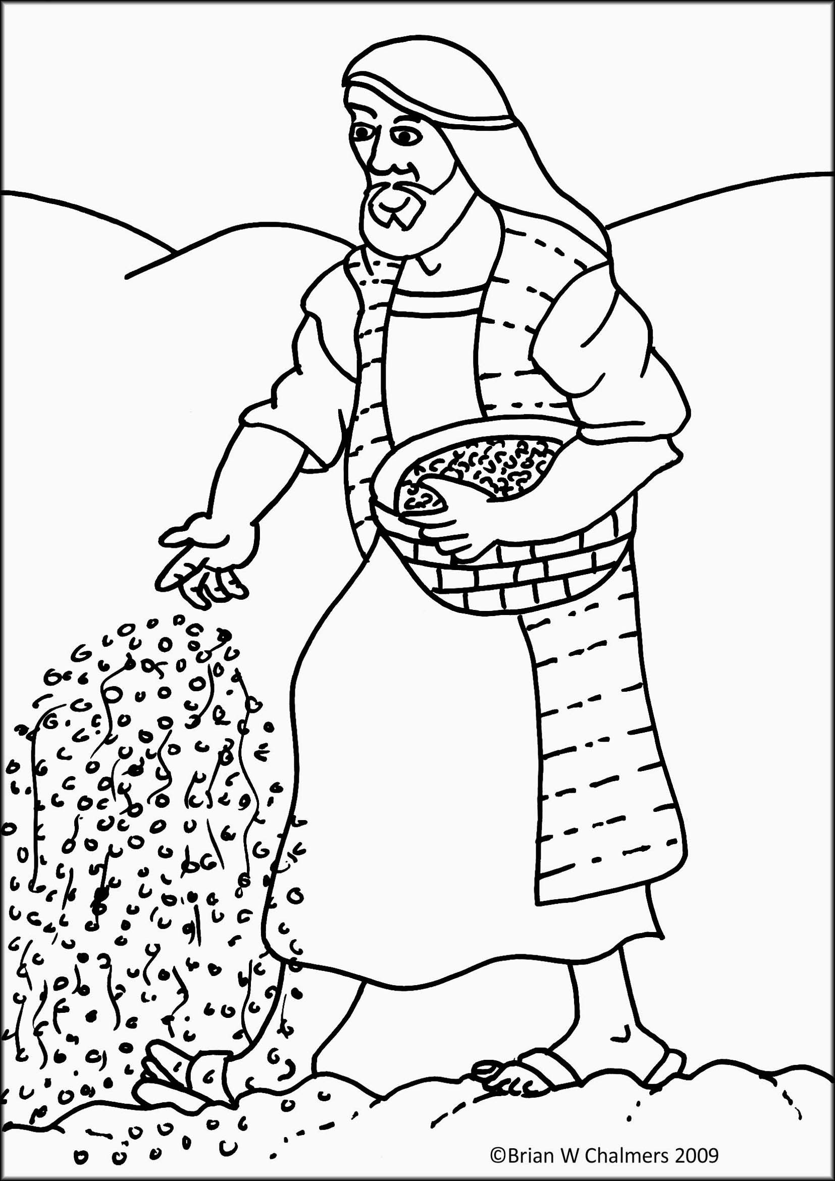 1000 images about Bible Sower