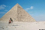 Color photo of Egyptian pyramid with man on camel, during the day. Free for use.