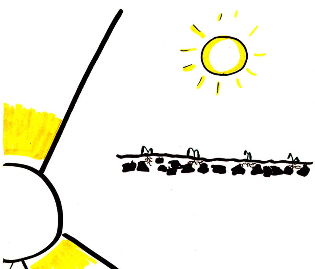 Parable of the Sower (Verson 2) Flip Chart | eBibleTeacher