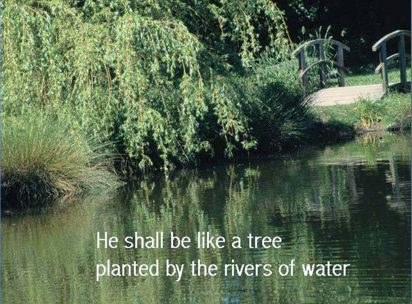 psalms chapter 1